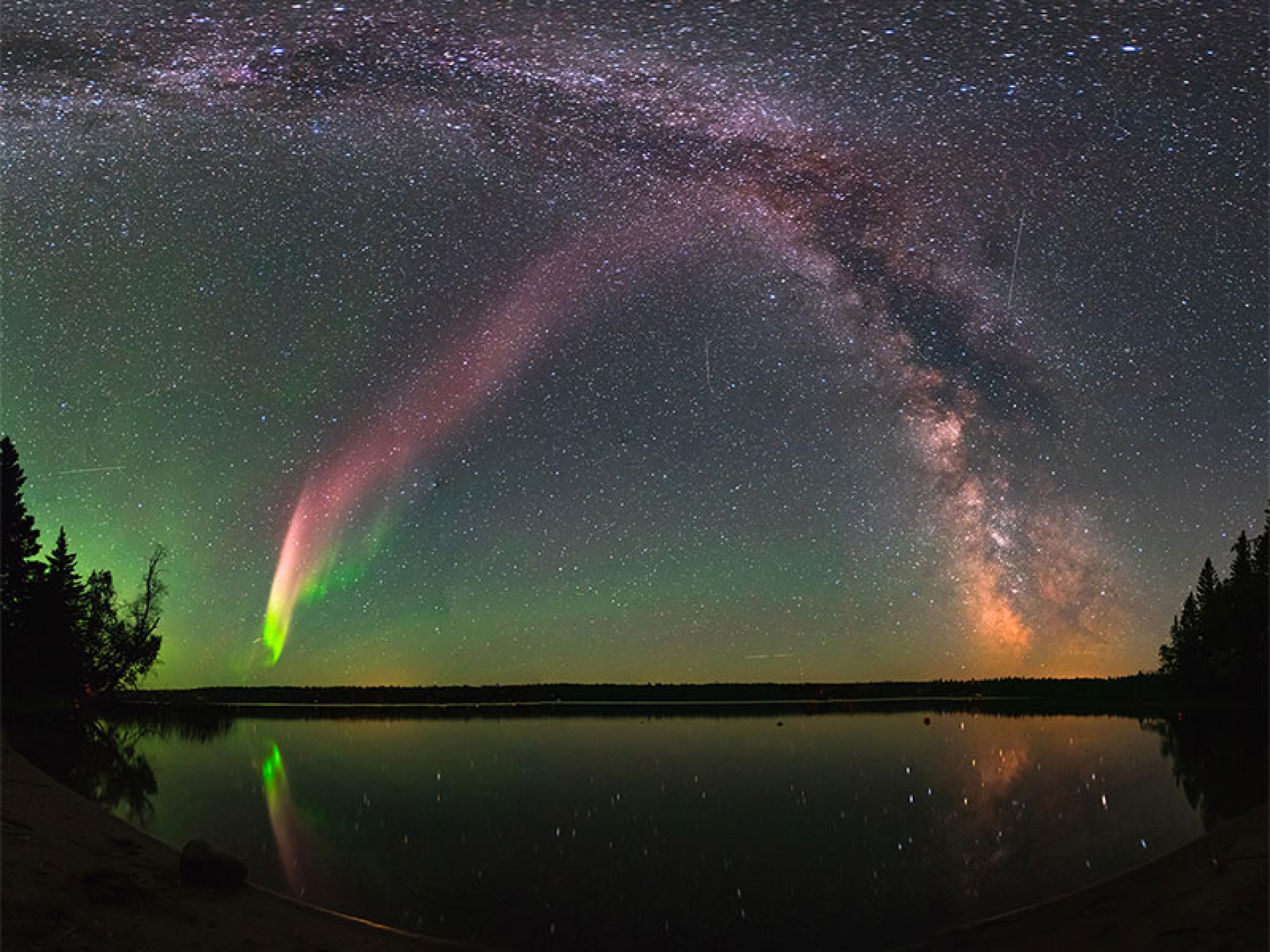 Photo of the aurora named Steve.