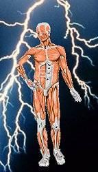 Lightning and Man