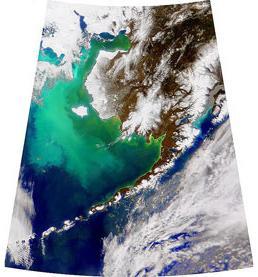 SeaWiFS - Bering Sea
