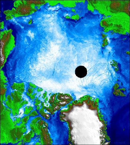 AMSR-E polar sea ice cover