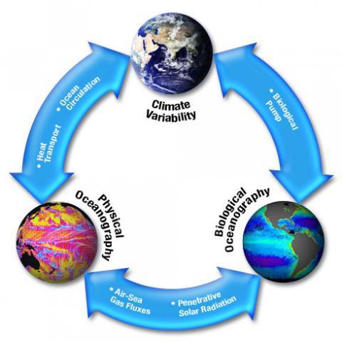 climate pyramid