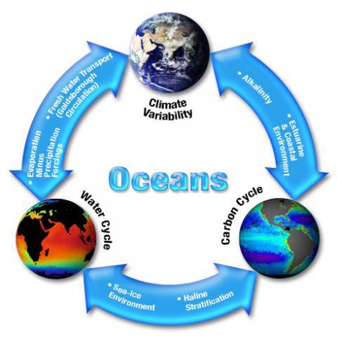 Oceans pyramid