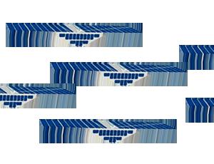 CYGNSS fleet spacecraft icons