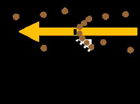 Illustration off the Lacrosse stick capturing a sample