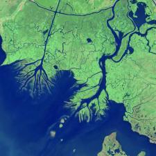 Simulation of delta formation