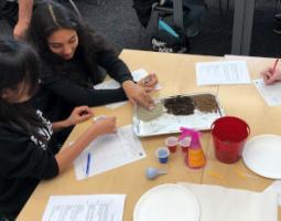A teacher and an elementary school student examine soils on a tray.