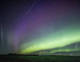 Comet NEOWISE appears in a sky streaked with purple and green aurora