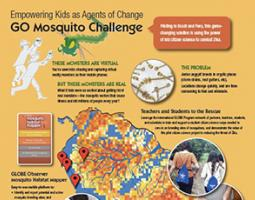 Screenshot of GO Mosquito Challenge infographic