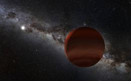 the white dwarf and a brown dwarf companion