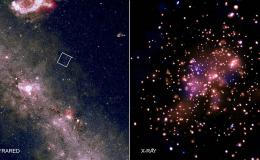 Star cluster NGC 6231