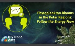Image of thumbnail photograph showing satellite image of phytoplankton and My NASA.