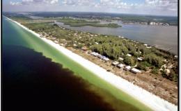 Photo of Red Tide along Florida coast