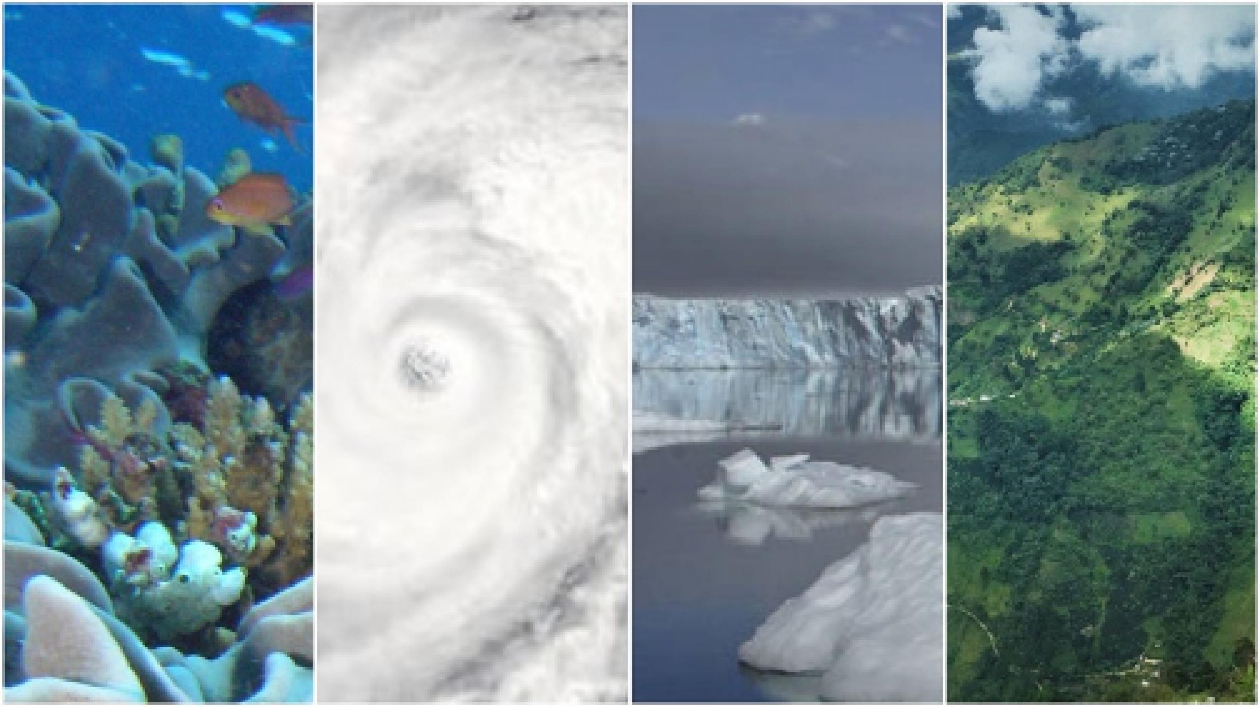Collage of four earth images: ocean coral, hurricane, glacier and green mountainside
