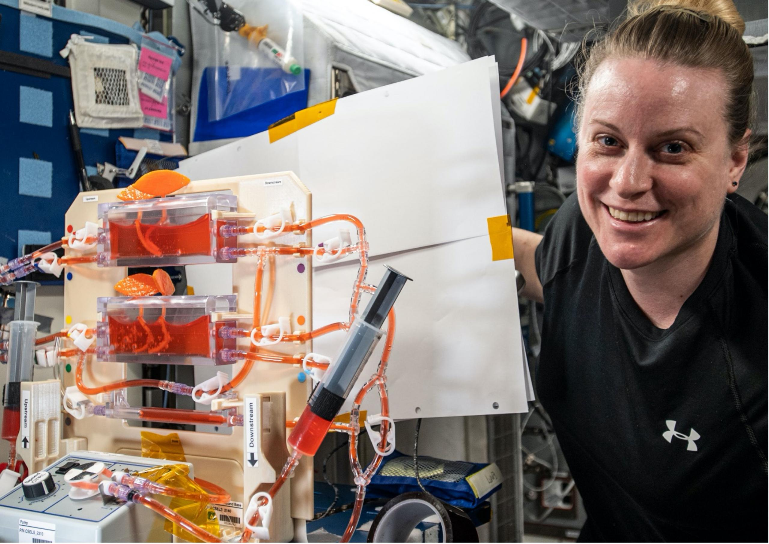 Photograph of a woman on the ISS next to the hydroponics research experiment with orange fluid in clear boxes connected by tubes.