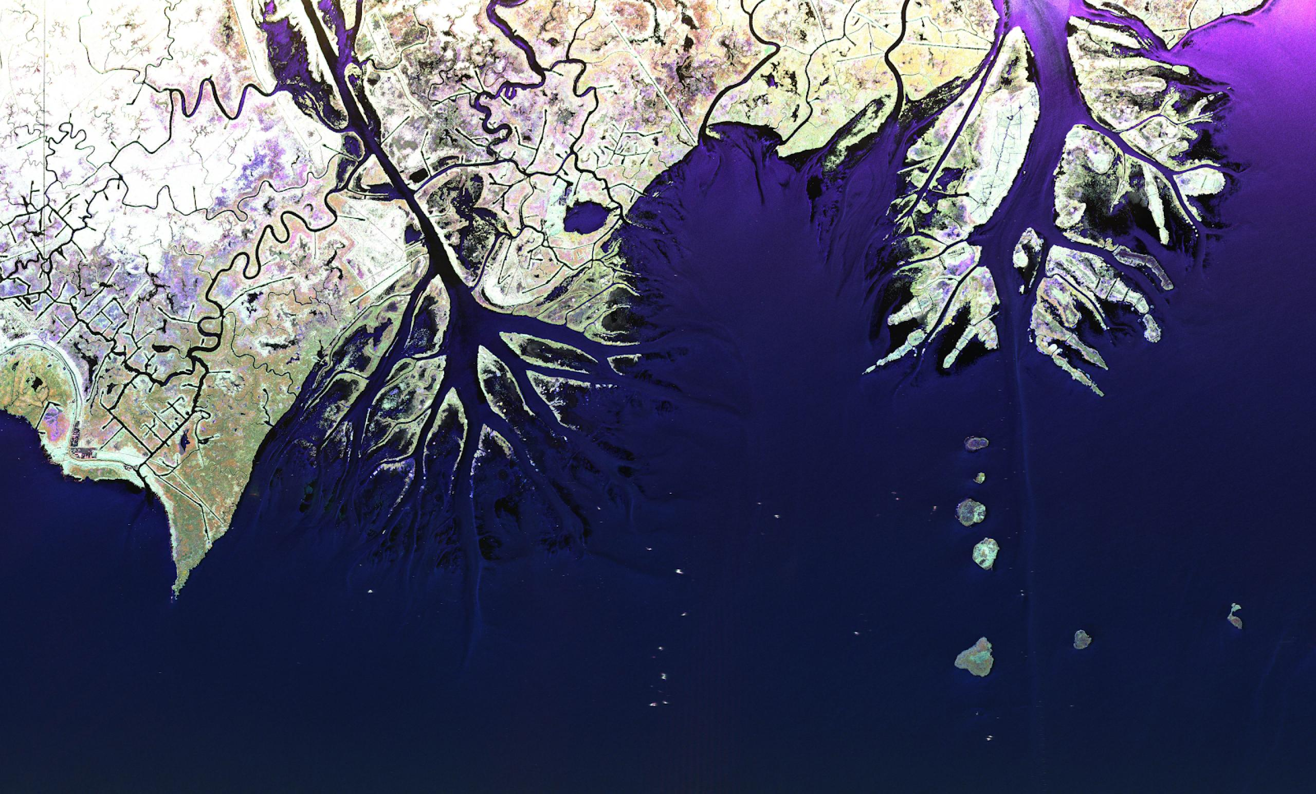 Satellite image of land meeting a body of water