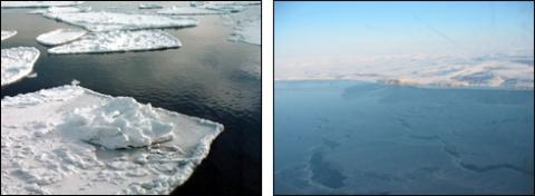 Ice floes in the Bering Sea