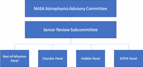 Organization Chart for the 2022 Senior Review Panel
