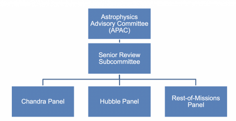 Organization Chart for the 2019 Senior Review Panel