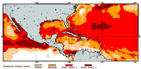Map of coral bleaching