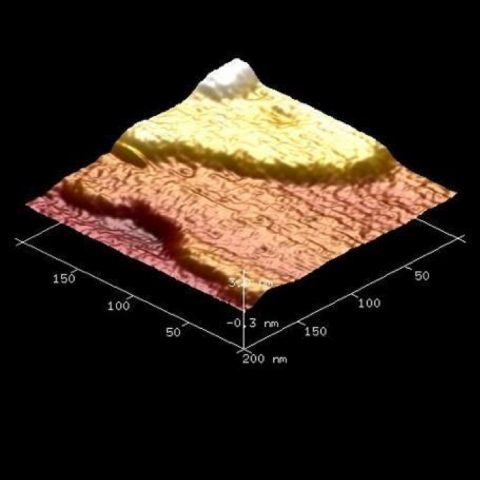 1)Three-dimensional rendering of the surface of a hematin crystal, along an x, y, and z axis.  Moving from lowest to highest points (front to back): the  lowest segment in red appears to be a valley, rising to a lower-middle segment that is fairly flat represented in an orange color, which rises to an upper middle segment that is also fairly flat represented in yellow, followed by small area at the top in white.