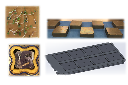 An image montage depticting seeds growing in a box and different views of the apparatus