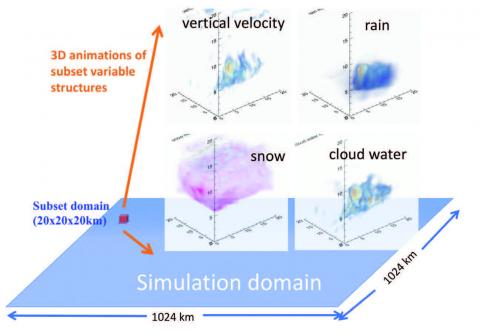 Diagram of the convection core and associated rain, snow and cloud water