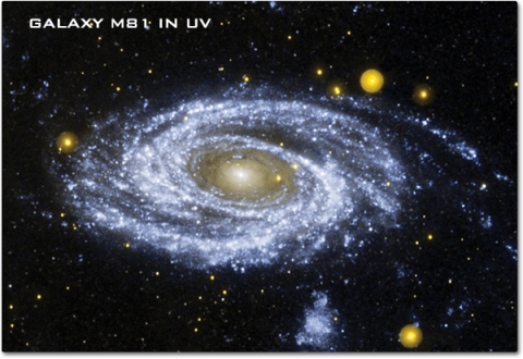 A view of the spiral Galaxy M81 in ultraviolet reveals thousands of young stars in blue and older start in yellow.