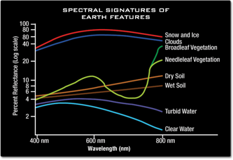A graph showing wavelengths in nanometers on the x-axis and percent reflectance on the y-axis. Snow, ice and clouds show a high reflectance across all wavelengths. Dry soil, wet soil, turbid water and clear water all seem to reflect similar values in the blue and green wavelengths, but have very different value closer to red and infrared where soils reflect more than water. Vegetation reflects more in the green and infrared than in the blue and red.