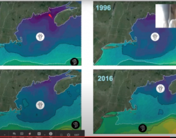 Heat maps of the Gulf of Maine from 1986, 1996, 2006, and 2016.