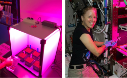 Photo of a young female student watering seeds in a grow box emitting a pink glow (left) and a female astronaut water seeds on the International Space Station in a grow box that is also emitting a pink glow.